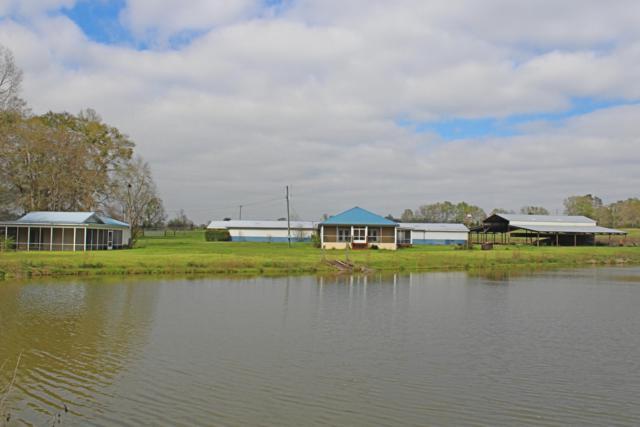 1455 Hwy 160, Westville, FL 32464 (MLS #817448) :: Classic Luxury Real Estate, LLC