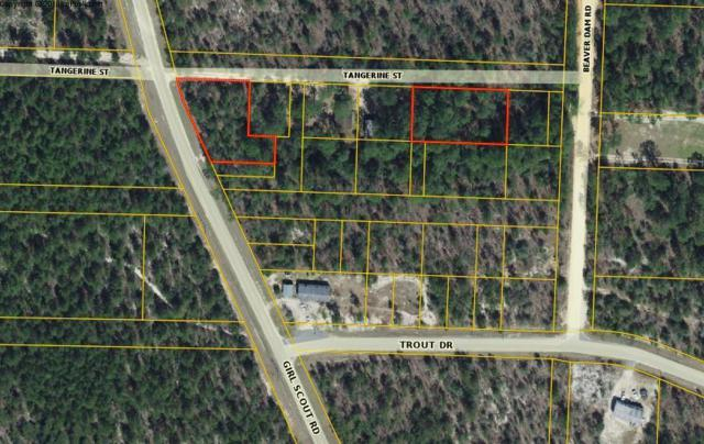 TBD Tangerine Street, Defuniak Springs, FL 32433 (MLS #817917) :: Classic Luxury Real Estate, LLC