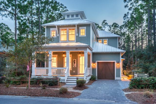29 Royal Fern Way, Santa Rosa Beach, FL 32459 (MLS #818159) :: Luxury Properties Real Estate