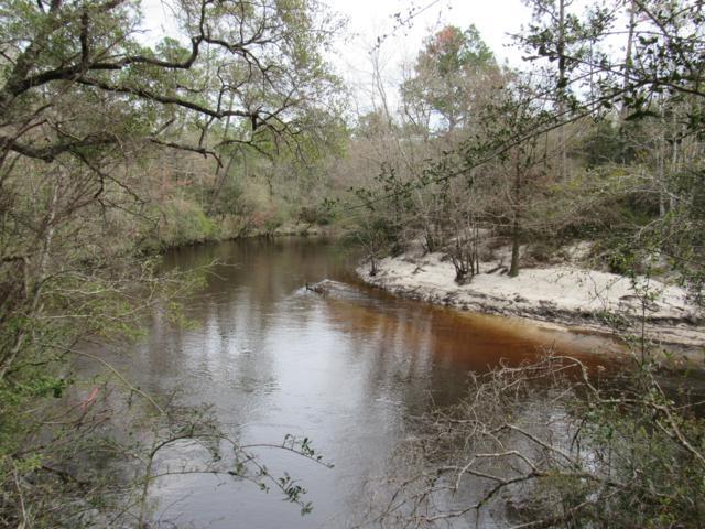 20 +/- AC Eagles Way, Defuniak Springs, FL 32433 (MLS #818396) :: CENTURY 21 Coast Properties