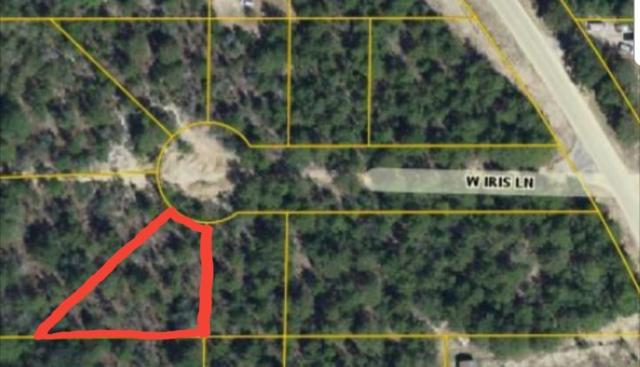 TBD W Iris Lane, Defuniak Springs, FL 32433 (MLS #818438) :: Keller Williams Emerald Coast
