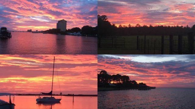 1408 Co Hwy 393 N, Santa Rosa Beach, FL 32459 (MLS #818786) :: Scenic Sotheby's International Realty