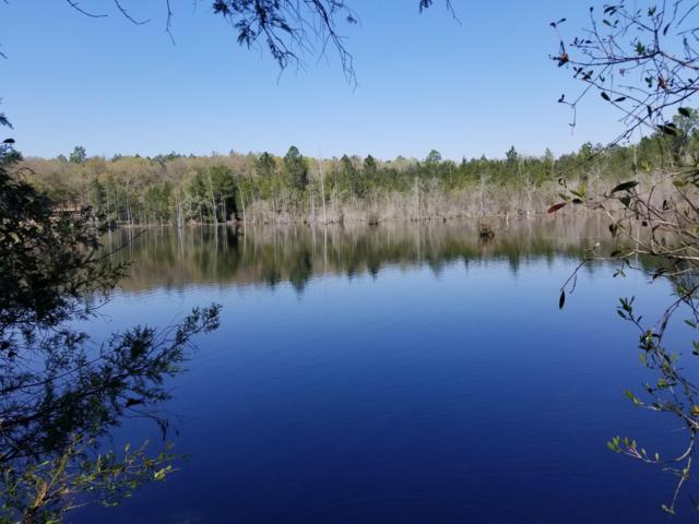 12 Ac Xxx Leisure Lane, Holt, FL 32564 (MLS #818950) :: Luxury Properties Real Estate