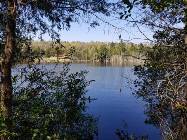 .98 Ac Xxx Leisure Lane, Holt, FL 32564 (MLS #818952) :: Luxury Properties Real Estate