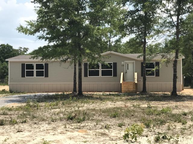 1508 Trotter Way, Baker, FL 32531 (MLS #819146) :: Classic Luxury Real Estate, LLC