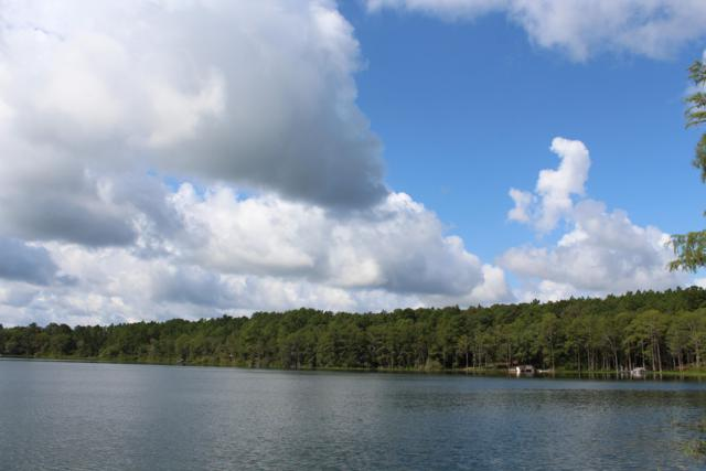1.5AC Blue Pond Circle, Ponce De Leon, FL 32455 (MLS #819554) :: Scenic Sotheby's International Realty