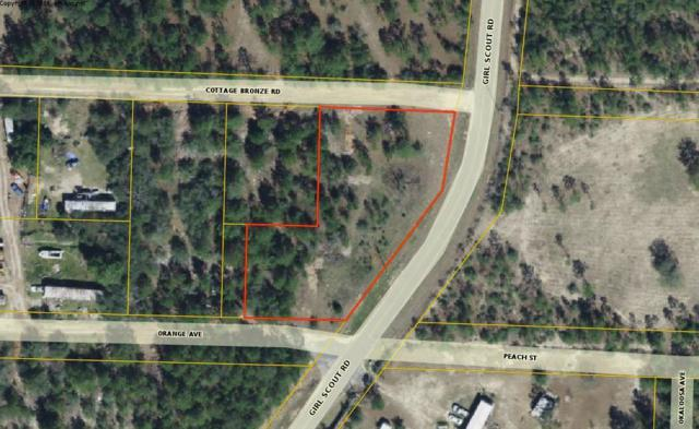 0 Girl Scout Road, Defuniak Springs, FL 32433 (MLS #820021) :: Classic Luxury Real Estate, LLC