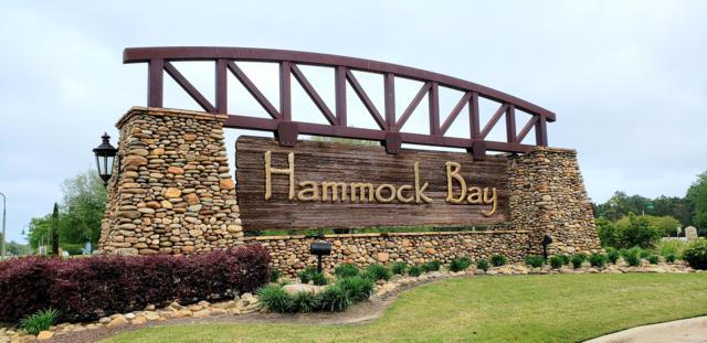 219 Canopy Cove, Freeport, FL 32439 (MLS #820188) :: Hammock Bay