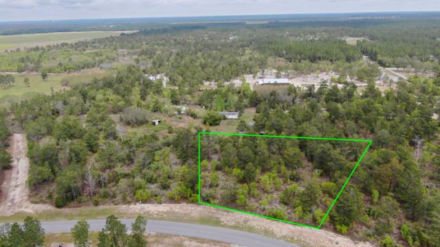 TBD Coastal Breeze Lot 5 Blk A Drive, Freeport, FL 32439 (MLS #820482) :: Scenic Sotheby's International Realty