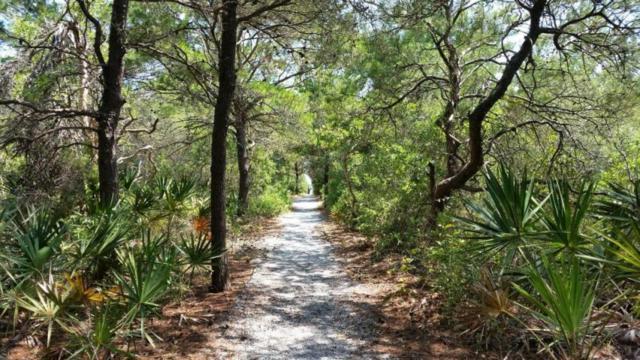 4545 E Co Highway 30-A Unit C202, Santa Rosa Beach, FL 32459 (MLS #820618) :: The Beach Group