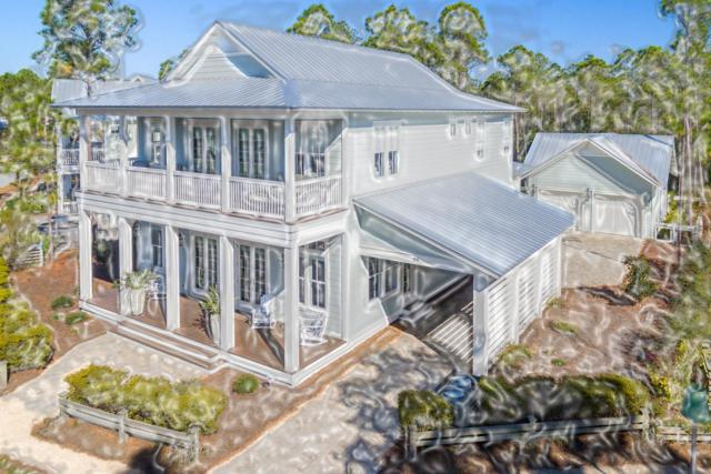 433 E Royal Fern Way, Santa Rosa Beach, FL 32459 (MLS #821819) :: Luxury Properties Real Estate