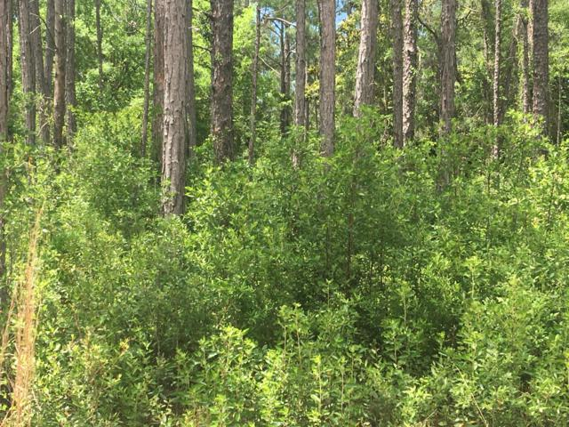 Lot 2 Bk E Delano Street, Santa Rosa Beach, FL 32459 (MLS #821986) :: The Ryan Group