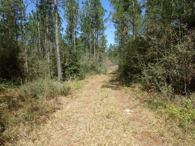 1212 Wallace Road, Defuniak Springs, FL 32433 (MLS #822483) :: The Beach Group