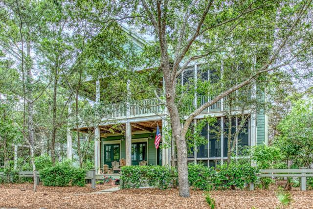 362 Western Lake Drive, Santa Rosa Beach, FL 32459 (MLS #822552) :: Luxury Properties Real Estate