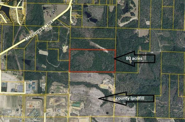 80AC No Street Access, Defuniak Springs, FL 32433 (MLS #822619) :: Counts Real Estate Group