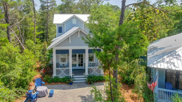 119 Hammock Lane, Santa Rosa Beach, FL 32459 (MLS #822982) :: 30A Real Estate Sales