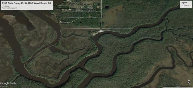 8188 Fish Camp Road, Milton, FL 32583 (MLS #823518) :: ResortQuest Real Estate