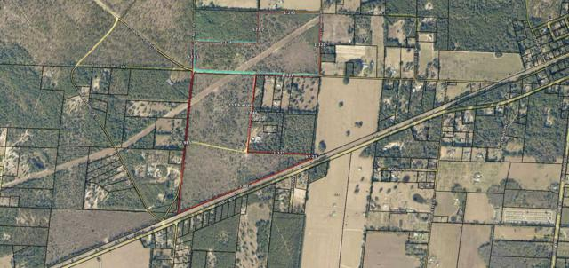 151.32 AC John Road, Holt, FL 32564 (MLS #823577) :: Classic Luxury Real Estate, LLC