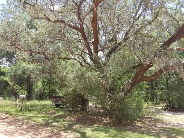 5263 Old Brown Road, Baker, FL 32531 (MLS #823679) :: ResortQuest Real Estate