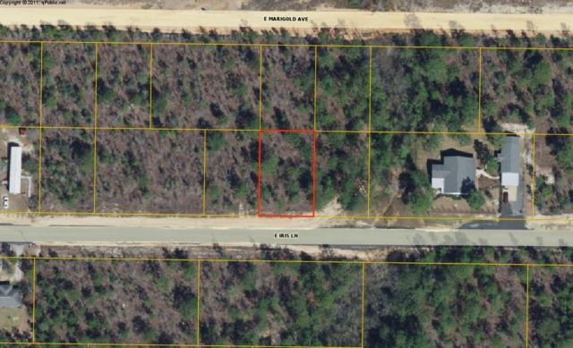 lot 29 Iris Lane, Defuniak Springs, FL 32433 (MLS #823885) :: ResortQuest Real Estate