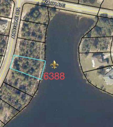 6388 Antigone Circle, Crestview, FL 32536 (MLS #823936) :: The Premier Property Group