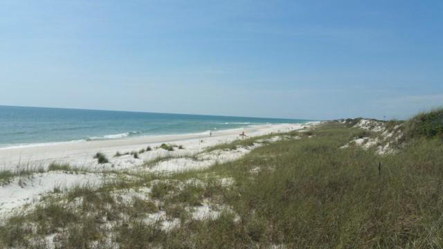 113 Hibiscus Beach Drive, Cape San Blas, FL 32456 (MLS #824141) :: Classic Luxury Real Estate, LLC