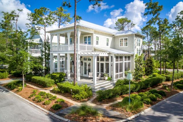 53 Muhly Circle, Santa Rosa Beach, FL 32459 (MLS #824327) :: 30A Escapes Realty