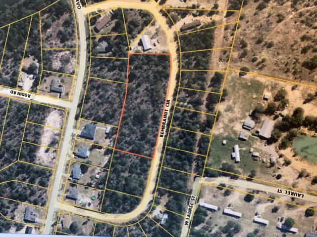100 Rembrandt Circle, Defuniak Springs, FL 32433 (MLS #824608) :: Somers & Company