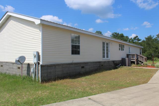 2414 J W Hollington Road, Freeport, FL 32439 (MLS #824884) :: CENTURY 21 Coast Properties