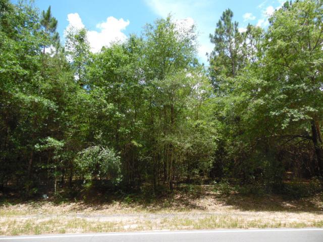 Lot 1 Ruckel Drive, Defuniak Springs, FL 32433 (MLS #825075) :: Classic Luxury Real Estate, LLC