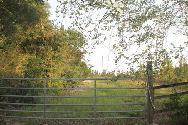 7.96 AC Dingo Drive, Milton, FL 32583 (MLS #825103) :: Counts Real Estate on 30A