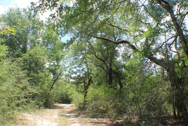 42 AC Tucker Bluff Road, Laurel Hill, FL 32567 (MLS #825254) :: Keller Williams Emerald Coast