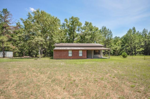 4310 Chapel Branch Drive, Vernon, FL 32462 (MLS #825273) :: ENGEL & VÖLKERS