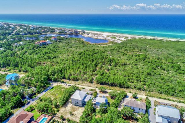 204 Sandstone Street, Santa Rosa Beach, FL 32459 (MLS #825641) :: 30A Escapes Realty