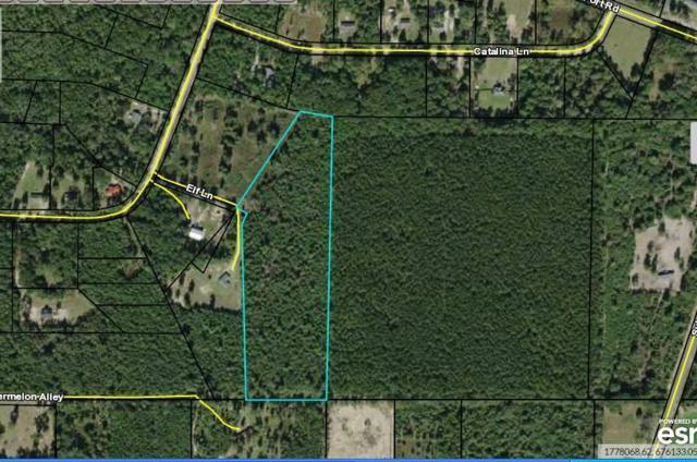 5861 Elf Road, Marianna, FL 32446 (MLS #825865) :: Classic Luxury Real Estate, LLC