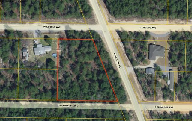 XX Walden Road, Mossy Head, FL 32434 (MLS #826339) :: Counts Real Estate on 30A