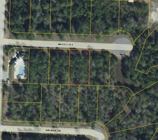 LOT 25 Grizzly Street, Freeport, FL 32439 (MLS #826475) :: CENTURY 21 Coast Properties