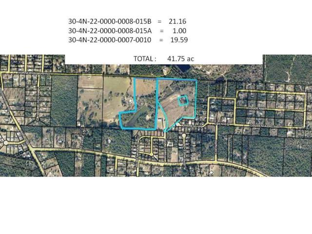 41.75 AC Horne Hollow Road, Crestview, FL 32539 (MLS #826694) :: RE/MAX By The Sea