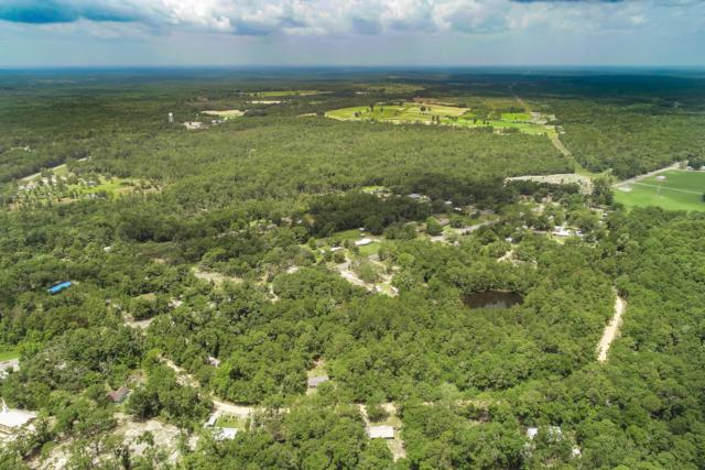 Lot 17-18 Blue Creek Road, Ponce De Leon, FL 32455 (MLS #826768) :: Luxury Properties on 30A