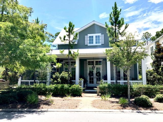 220 E Royal Fern Way Way, Santa Rosa Beach, FL 32459 (MLS #827144) :: Scenic Sotheby's International Realty