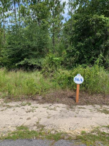 LOT 56 Hibernate Way, Freeport, FL 32439 (MLS #827301) :: Linda Miller Real Estate
