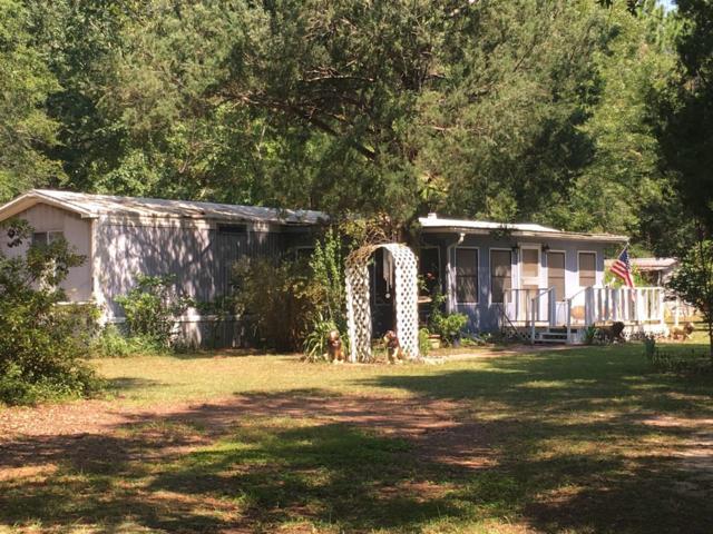 967 Lighthouse Church Road, Holt, FL 32564 (MLS #828377) :: Classic Luxury Real Estate, LLC