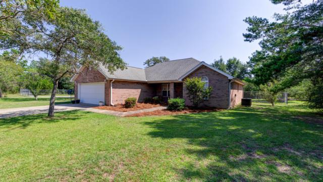 4041 Zinnia Drive, Chipley, FL 32428 (MLS #828466) :: ResortQuest Real Estate