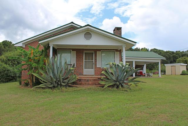 2124 Hwy 81 N, Westville, FL 32464 (MLS #828697) :: ResortQuest Real Estate