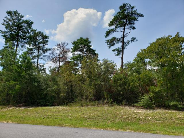 Lot 5 Tournament Lane, Freeport, FL 32439 (MLS #829192) :: Coastal Lifestyle Realty Group
