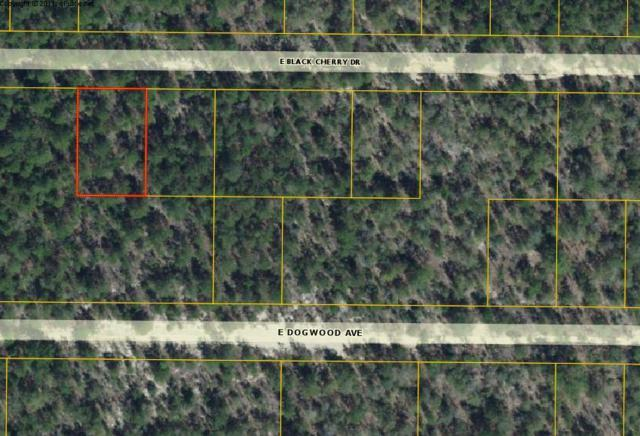 XX E Black Cherry Drive, Defuniak Springs, FL 32433 (MLS #829273) :: Coastal Luxury