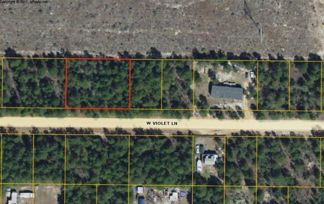 XX W Violet Lane, Defuniak Springs, FL 32433 (MLS #829311) :: Keller Williams Emerald Coast