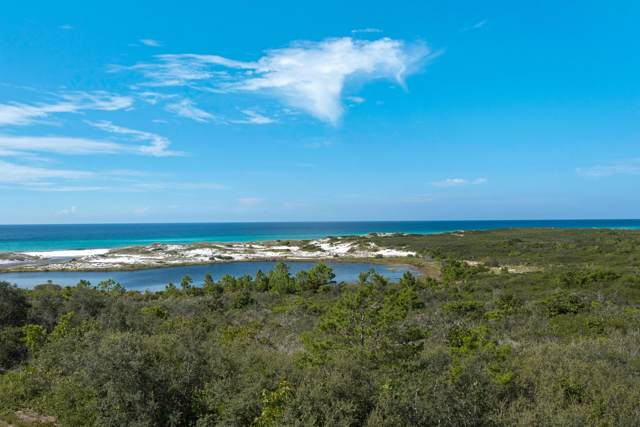 114 Loon Lake Drive, Santa Rosa Beach, FL 32459 (MLS #831592) :: ENGEL & VÖLKERS