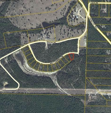 76 Roy Campbell Road, Defuniak Springs, FL 32433 (MLS #832152) :: CENTURY 21 Coast Properties