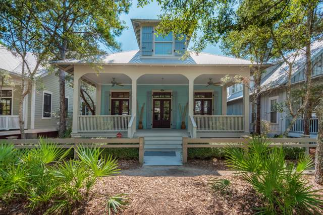 60 Spartina Circle, Santa Rosa Beach, FL 32459 (MLS #832169) :: Luxury Properties on 30A